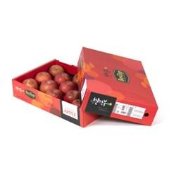 전북농협조합 부사 사과 5kg 특 13入 선물세트