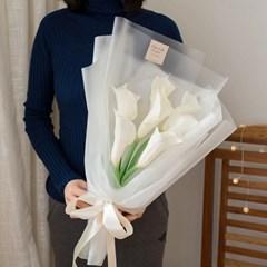 프로포즈 7송이 카라꽃다발(대)_(556090)