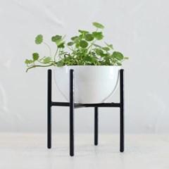 수경식물+화분스탠드