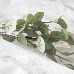[포홈]빅리프 유카리 (조화/꽃/leaf)_(1155149)