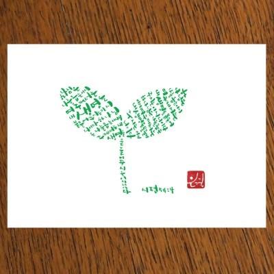 STRAWHAT LOVE illust postcard-새싹