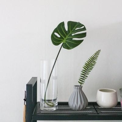 몬스테라 잎 조화 Leaf