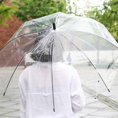 투명 우산