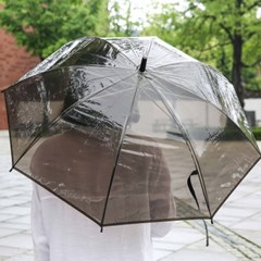 반투명 블랙 우산