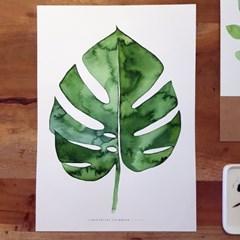 [텐텐클래스] (부산) 몬스테라 포스터와 초록잎 수채화 달력