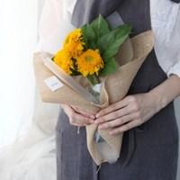 고흐가 사랑한 꽃, 겹꽃 해바라기