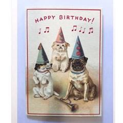 카발리니 카드-Happy birthday dog2
