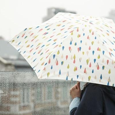 BECAUSE Umbrella 단우산
