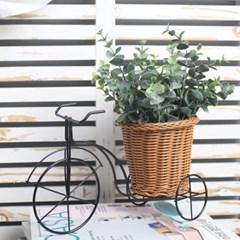 유카리 자전거 바구니 화분_(1234304)