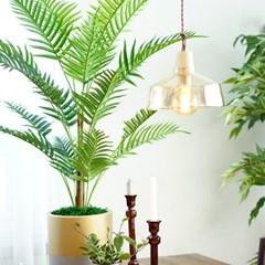 이렇게 고급진 야자나무는 처음일껄?