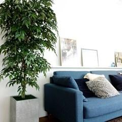 변하지 않는 싱그러움 인조 시밀락스나무