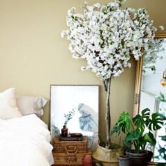 모양부터 심쿵 토피어리 벚꽃나무