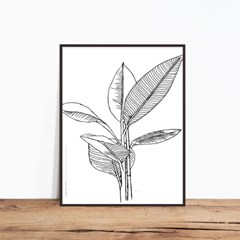 banyan-tree02