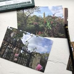elnovamas Giverny postcard