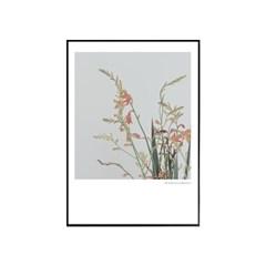 에포크 - 꽃시리즈 No.5 50x70