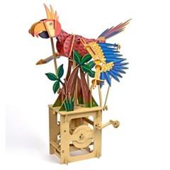 패럿앵무새 - Parrot