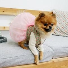메종드독 강아지한복 데일리 플로리_(1010977)