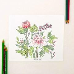 (대치) 쉽게 색연필로 그리는 민화