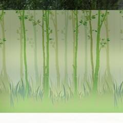 고급칼라안개시트_자작나무 숲의 여름_(820523)