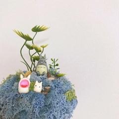 [텐텐클래스] (홍대) '나만의 작은 정원' 테라리움 오르골