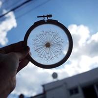 프랑스자수 투명자수액자 DIY 키트 - 민들레 홀씨 Dandelion