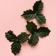 월계수잎 30p