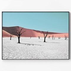 메탈 사막 사진 풍경 인테리어 포스터 액자 Deadvlei