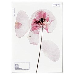 패브릭 포스터 F235 꽃 식물 인테리어 액자 양귀비