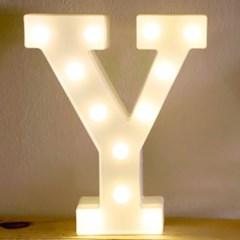 LED 앵두전구 조명등 알파벳 Y_(301650722)