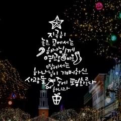 1AM 크리스마스 데코 스티커 영광평화 눈꽃 시트지_(1244785)