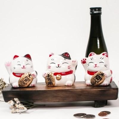 [손흔드는 일본 마네키네코 저금통] 복고양이 인형 3종세트 냥코센세