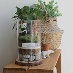 [텐텐클래스] (강동) 책상 위 작은 정원 테라리움 원데이클래스