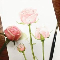 [텐텐클래스] (잠실) 보태니컬 아트, 수채화로 하루 한 꽃 (6주)