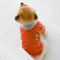 miffy & friends cardigan / Orange