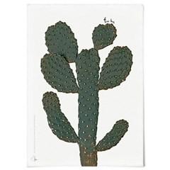 패브릭 천 포스터 F022 식물 선인장 액자 프리 허그