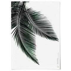 패브릭 포스터 F017 보테니컬 식물 액자 그린 야자수 B