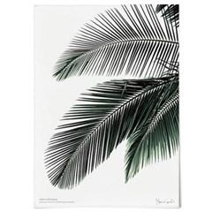 패브릭 천 포스터 F016 식물 나뭇잎 액자 그린 야자수 A
