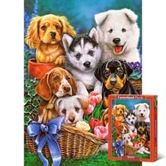 귀여운 강아지들 [1000조각/직소퍼즐/동물/LD104048]