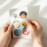 꽃 사진 스티커 (3sheet)