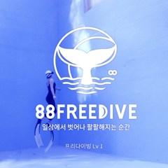 (서울) 수면 아래로의 초대 | 프리다이빙 입문(Lv 1) 자격증