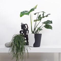 Harmony 열대식물 + 블랙앤화이트화분