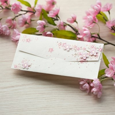 디원 벚꽃 돈봉투(JD04)