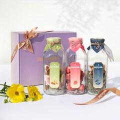 우리둘이 한잔 뇸뇸 묘약 담금주키트 3구 선물세트