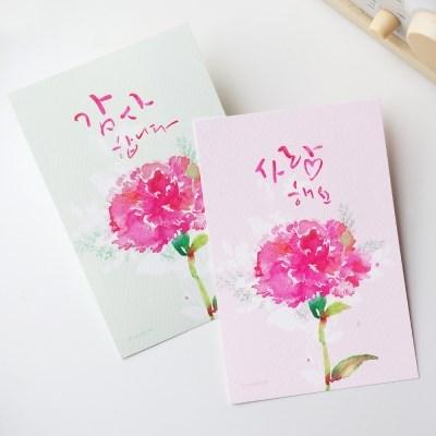 엽서] 한송이 카네이션 (선택- 사랑, 감사)