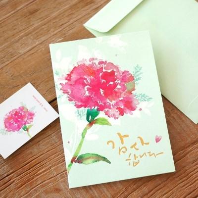카네이션 카드(#감사합니다)