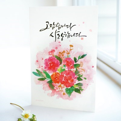 카드] 카네이션 꽃