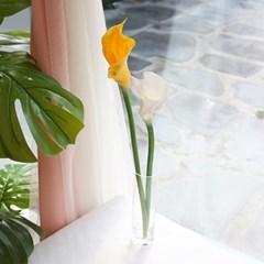 칼라 조화 / 카라 꽃
