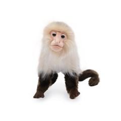 5851-원숭이 인형 20 cm.H_(1322843)