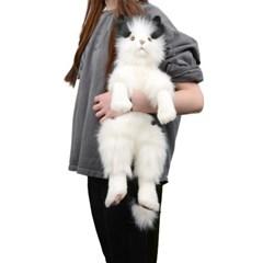4642-고양이 인형 45cm.H_(1322845)