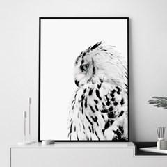 부엉이 동물 포스터 인테리어 그림 포스터